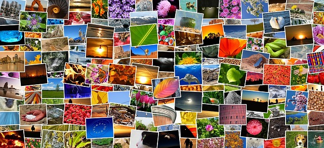 How to find free images, videos and artwork