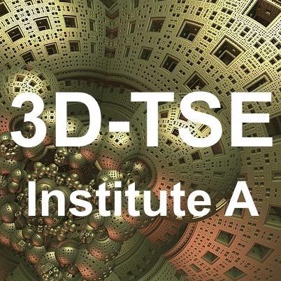 3D TSE Institute A
