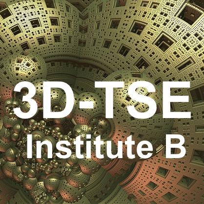 3d TSE Institute B