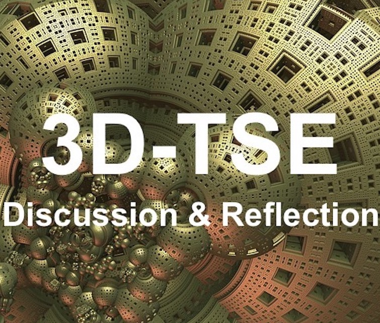 3D TSE Discussion and Reflection