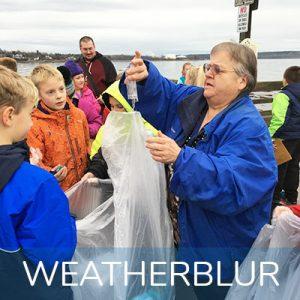 MMSA Citizen Science WeatherBlur