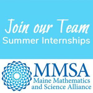 join our team mmsa summer internships