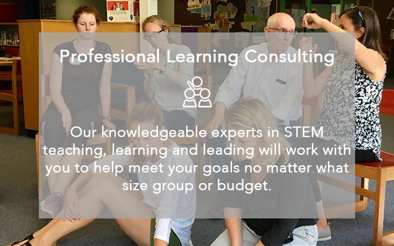 Professional Learning Consulting at MMSA